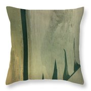 Pool Reflections Throw Pillow