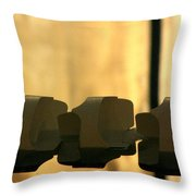 Pool Reflections Two Throw Pillow