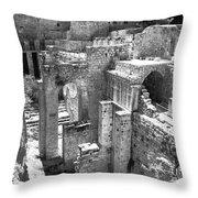 Pools Of Bethesda Throw Pillow