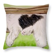 Pooped In The Park Throw Pillow