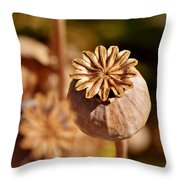 Poopy Seed Pod... Throw Pillow