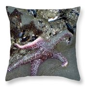 Poor Little Starfish Throw Pillow