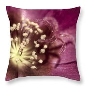 Popcorn Explosion Throw Pillow