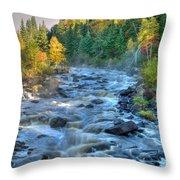 Poplar River  Throw Pillow
