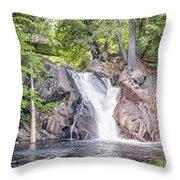 Poplar Stream Falls Throw Pillow