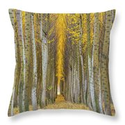 Poplar Tree Farm In Boardman Oregon In Fall Closeup Throw Pillow