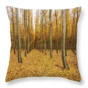 Poplar Tree Farm In Oregon Throw Pillow