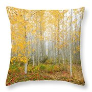 Poplar Tree Grove In Fall Throw Pillow