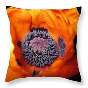 Poppie Throw Pillow