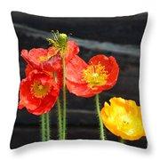 Poppies 17-01 Throw Pillow