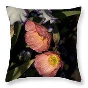 Poppies 6 Throw Pillow