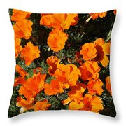 Poppies Alive Throw Pillow