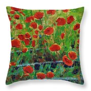 Poppies And Traverses 1 Throw Pillow