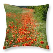 Poppies Awash Throw Pillow