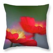 Poppies Edges Throw Pillow