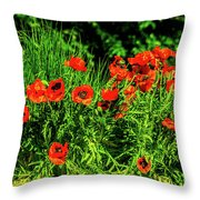 Poppies Flowerbed Throw Pillow