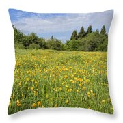 Poppies Forever Throw Pillow