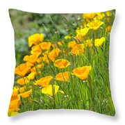 Poppies Hillside Meadow Landscape 19 Poppy Flowers Art Prints Baslee Troutman Throw Pillow
