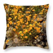 Poppies On The Rocks Throw Pillow