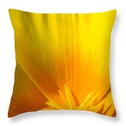 Poppies Orange Poppy Flower Close Up 2 Sunlit Poppy Baslee Troutman Throw Pillow