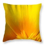 Poppies Orange Poppy Flower Close Up 2 Sunlit Poppy Baslee Troutman Throw Pillow