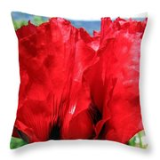 Poppies Plus Throw Pillow