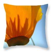 Poppies Sunlit Poppy Flower 1 Wildflower Art Prints Throw Pillow