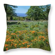 Poppies With A View At Oak Glen Throw Pillow