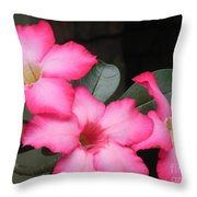 Poppin Pink Flowers Throw Pillow