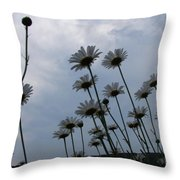 Poppin Throw Pillow