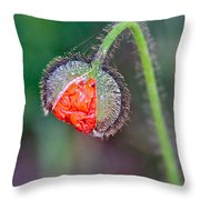 Popping Poppy Throw Pillow