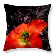 Poppy At Dusk Throw Pillow
