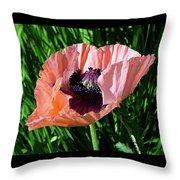 Poppy Beautiful Throw Pillow