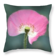 Poppy Fan Throw Pillow