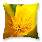 Poppy Flower Close Up Macro 20 Poppies Meadow Giclee Art Prints Baslee Troutman Throw Pillow