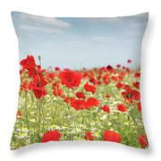 Poppy Flowers Field Nature Spring Scene Throw Pillow