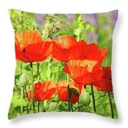 Poppy Garden I Throw Pillow
