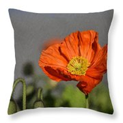 Poppy - Id 16235-142806-2801 Throw Pillow