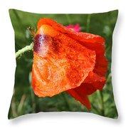 Red Poppy II Throw Pillow