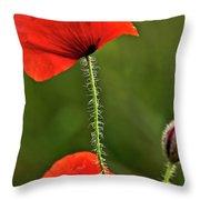 Poppy Image Throw Pillow
