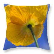 Poppy In The Sky Throw Pillow by Kathy Yates