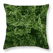Poppy Leaves Throw Pillow