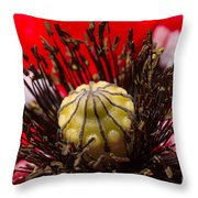 10092 Poppy Love #01 Throw Pillow