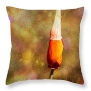 Poppy Metamorphose Throw Pillow by Pam Vick