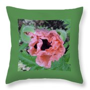 Poppy Opening - 2 Throw Pillow