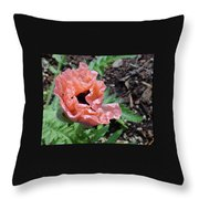 Poppy Opening Throw Pillow