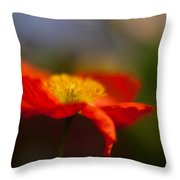 Poppy Resplendent Throw Pillow