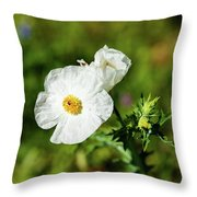 Poppy Wildflower Throw Pillow