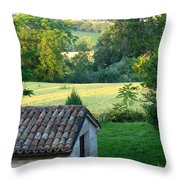Porco Vecchio Fienile Throw Pillow