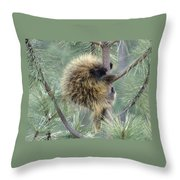 Porcupine Tree Throw Pillow